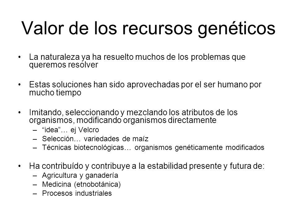 Valor de los recursos genéticos La naturaleza ya ha resuelto muchos de los problemas que queremos resolver Estas soluciones han sido aprovechadas por