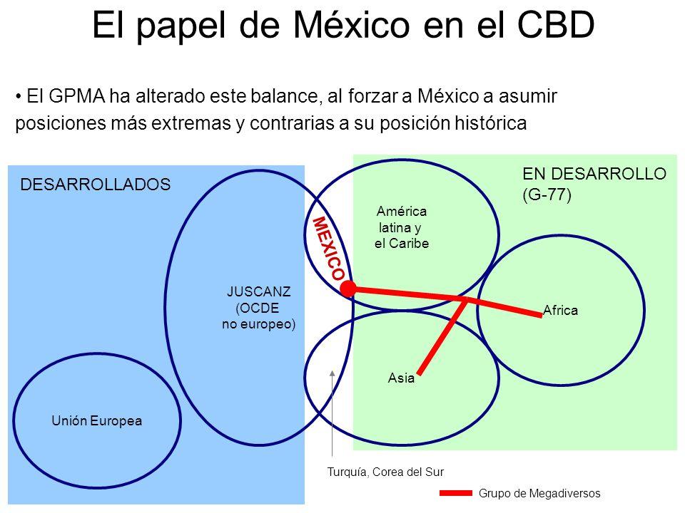El papel de México en el CBD JUSCANZ (OCDE no europeo) América latina y el Caribe Africa Asia Unión Europea DESARROLLADOS EN DESARROLLO (G-77) Turquía