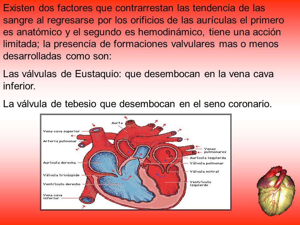 Existen dos factores que contrarrestan las tendencia de las sangre al regresarse por los orificios de las aurículas el primero es anatómico y el segun