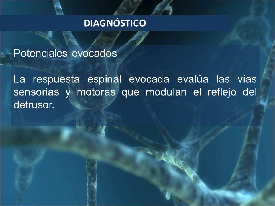 DIAGNÓSTICO Potenciales evocados La respuesta espinal evocada evalúa las vías sensorias y motoras que modulan el reflejo del detrusor.