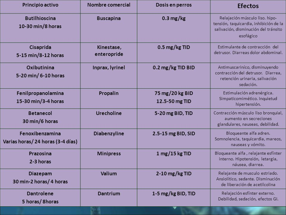 Principio activoNombre comercialDosis en perros Efectos Butilhioscina 10-30 min/8 horas Buscapina0.3 mg/kg Relajación músculo liso.