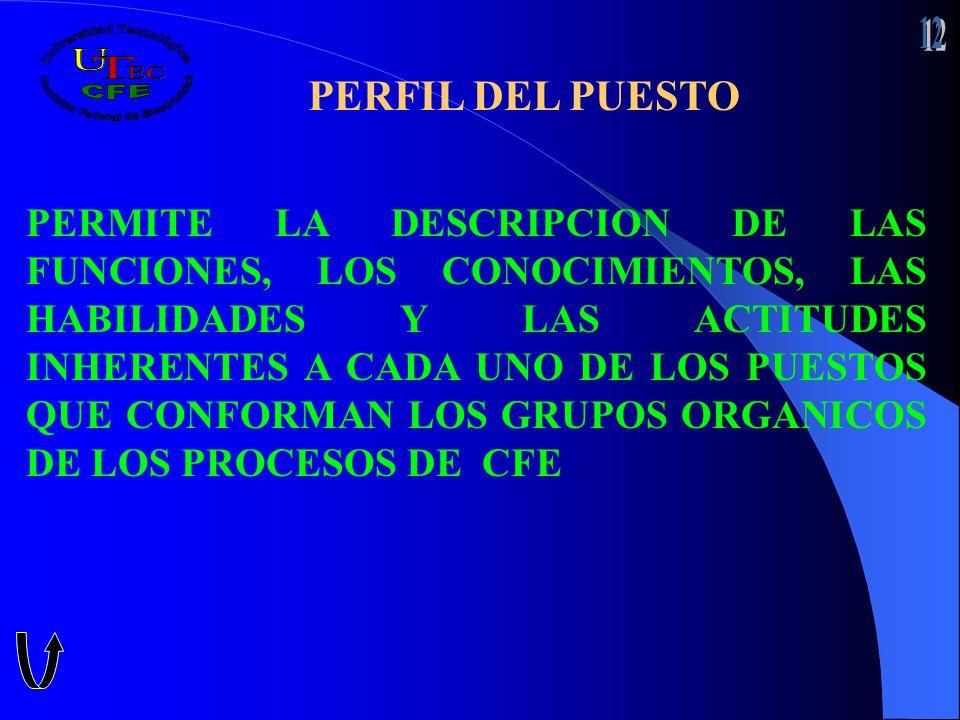 PERFIL DEL PUESTO PERMITE LA DESCRIPCION DE LAS FUNCIONES, LOS CONOCIMIENTOS, LAS HABILIDADES Y LAS ACTITUDES INHERENTES A CADA UNO DE LOS PUESTOS QUE