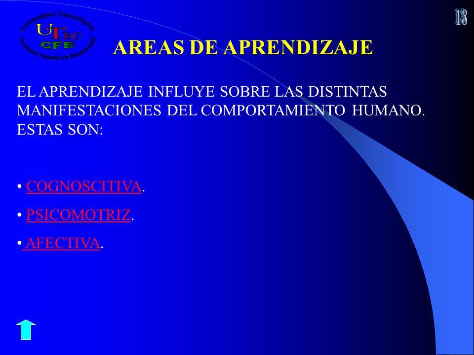 AREAS DE APRENDIZAJE EL APRENDIZAJE INFLUYE SOBRE LAS DISTINTAS MANIFESTACIONES DEL COMPORTAMIENTO HUMANO. ESTAS SON: COGNOSCITIVA.COGNOSCITIVA PSICOM