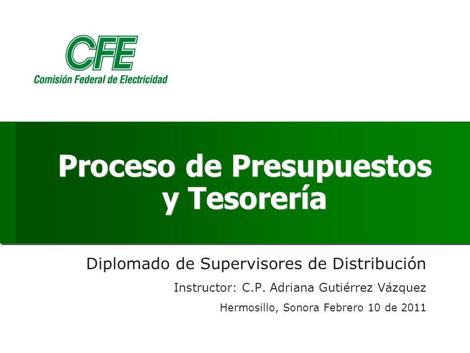 Proceso de Presupuestos y Tesorería Diplomado de Supervisores de Distribución Instructor: C.P.