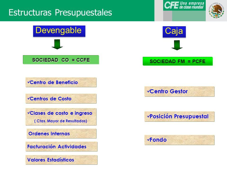Estructuras Presupuestales SOCIEDAD CO = CCFE Centro de Beneficio Centros de Costo Clases de costo e ingreso ( Ctas.