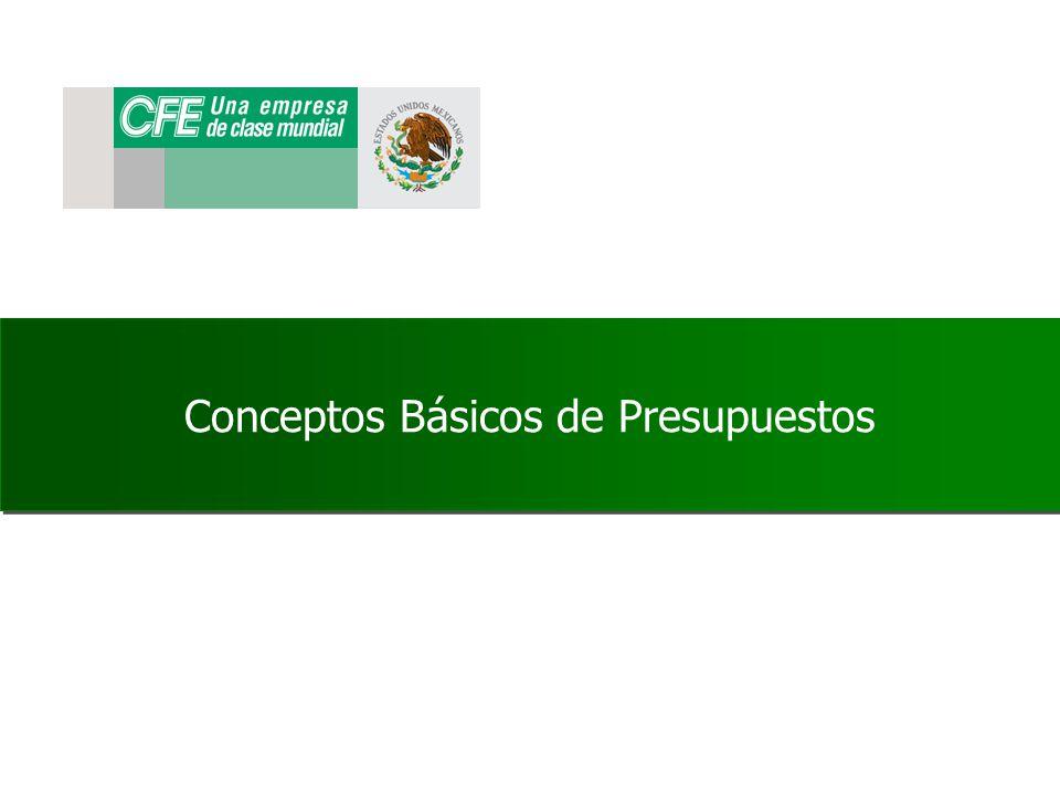 Estructuras Presupuestales Centro de beneficio.- Representa un area de responabilidad en la cual se transfieren Costos y se registran ingresos.