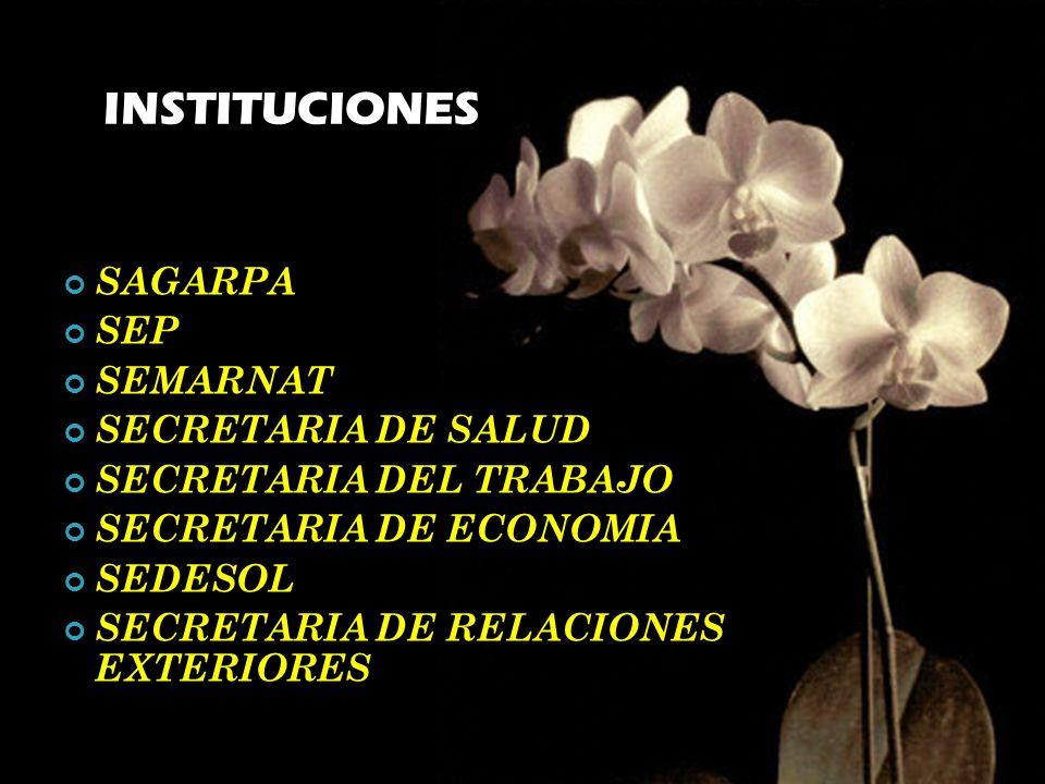 Hasta noviembre de 1999, se ha entregado 6053 certificados. XInstituto Mexicano de Contadores Públicos, A.C., Federación de Colegios de Profesionistas