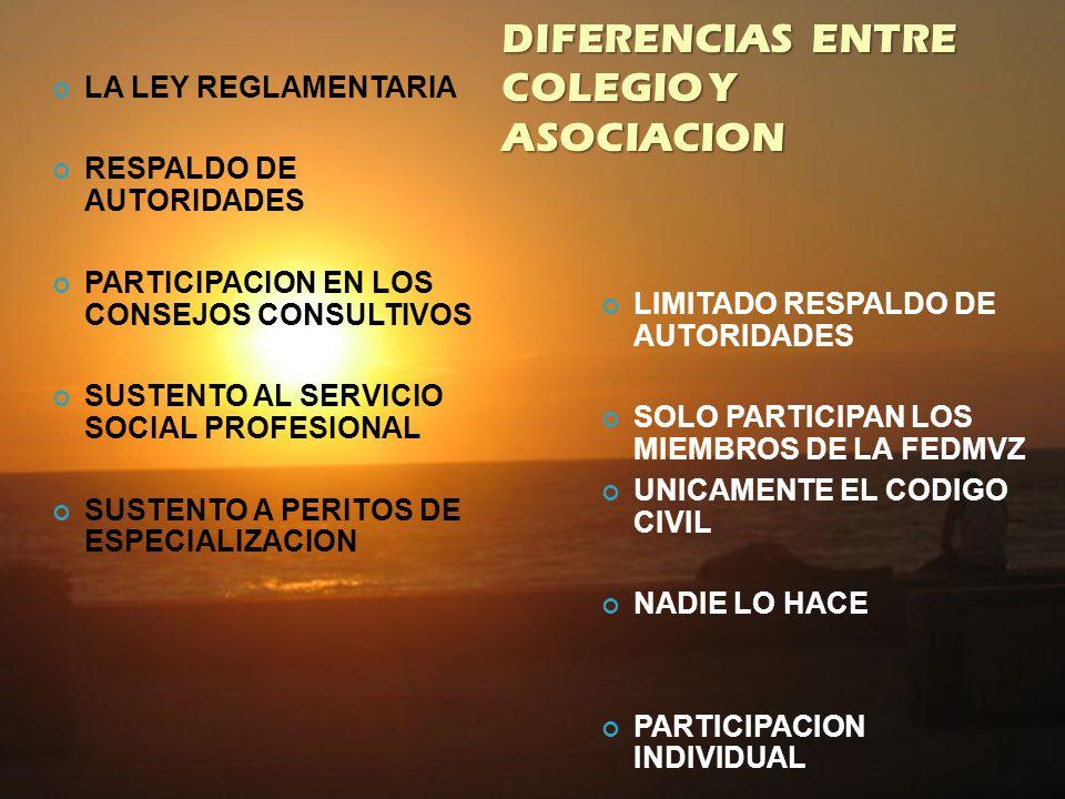 LEY REGLAMENTARIA DEL ARTICULO 5 TO. CONSTITUCIONAL AMPLIAR NUESTRO MARCO JURIDICO SUSTENTO A LOS HONORARIOS CREACION DE PERITOS SERVICIO SOCIAL PROFE