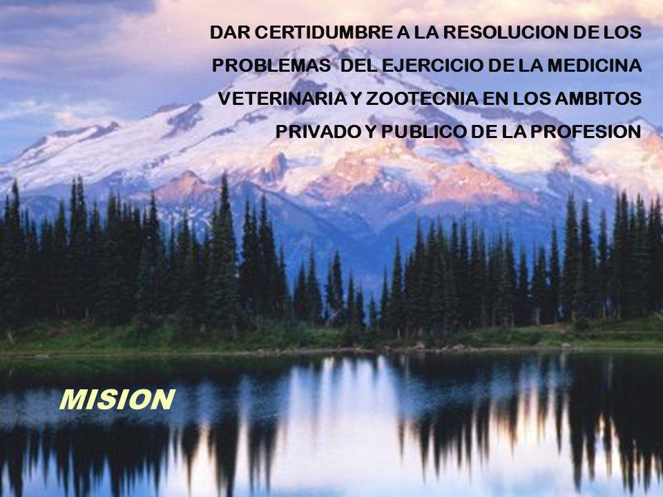 DIFERENCIAS ENTRE COLEGIO Y ASOCIACION LA LEY REGLAMENTARIA RESPALDO DE AUTORIDADES PARTICIPACION EN LOS CONSEJOS CONSULTIVOS SUSTENTO AL SERVICIO SOC