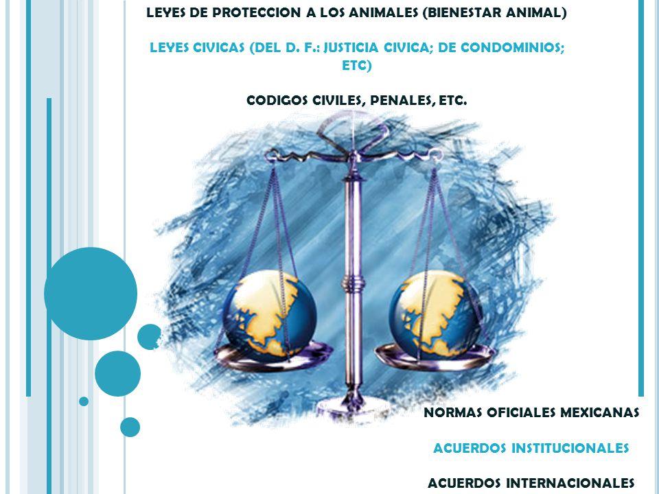 LEY GENERAL DE SALUD LEY FEDERAL DEL TRABAJO LEY GENERAL DE EDUCACION LEY DE ORGANIZACIONES CIVILES LEY FEDERAL SOBRE METROLOGIA Y NORMALIZACION