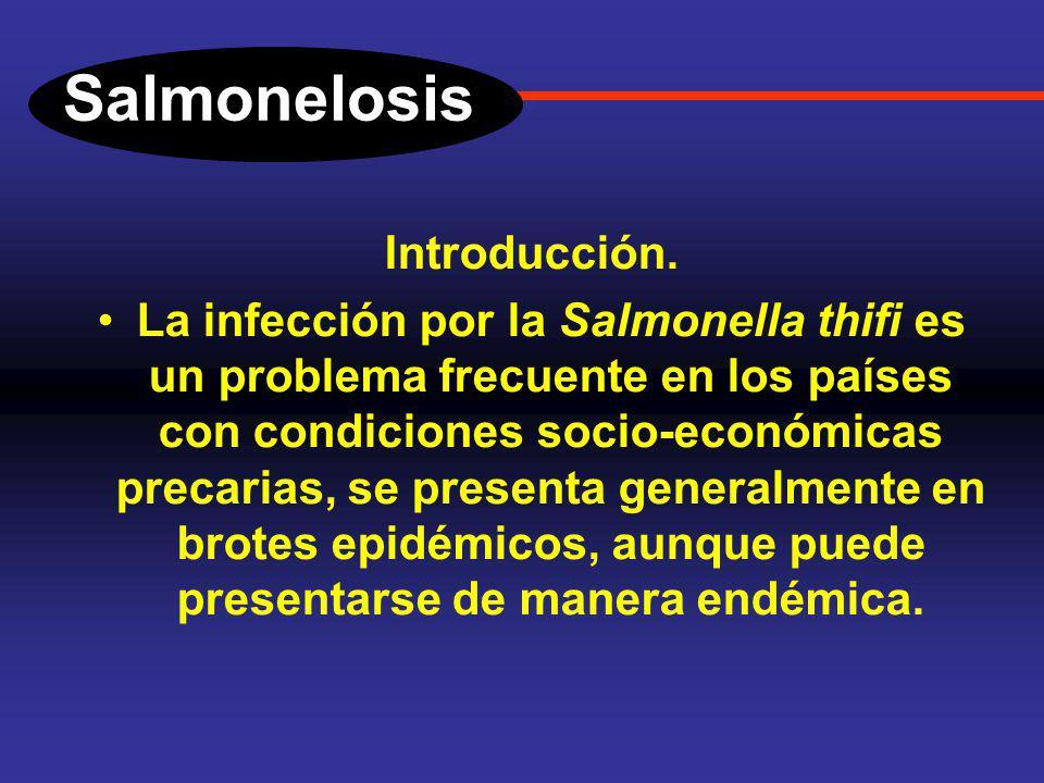 Salmonelosis y Dr. Fernando Bernal Sahagún Servicio de Gastroenterología Hospital General de México. diarreas en el adulto