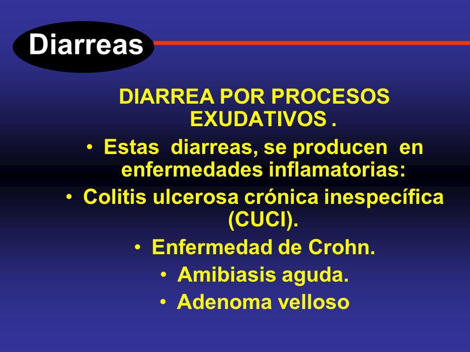 Diarreas DIARREA POR PROCESOS EXUDATIVOS. En este tipo de diarreas, la salida por exudación de proteínas, sangre, pus, de áreas inflamadas, ulceradas