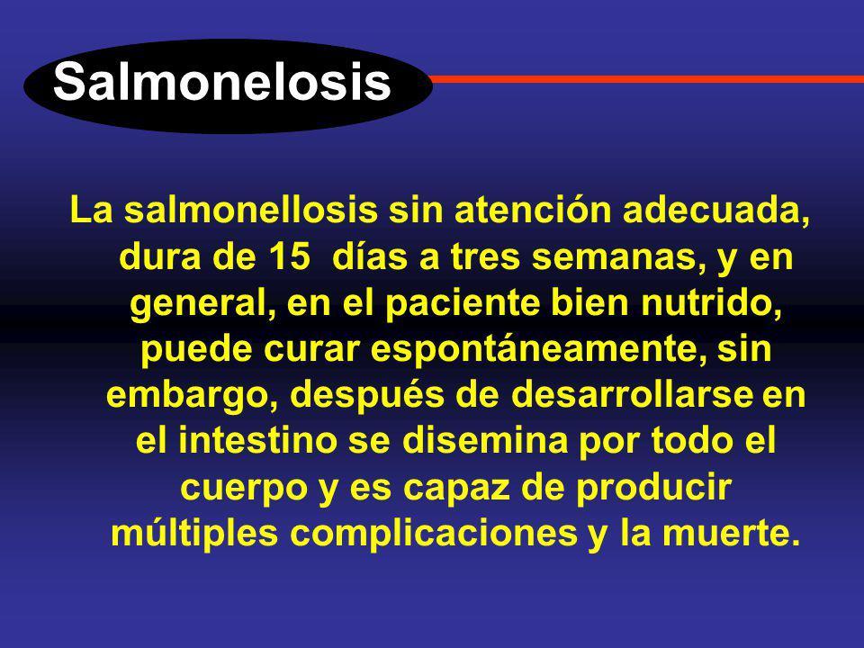 Salmonelosis Cuadro clínico. La salmonelosis es una enfermedad febril, el paciente inicia con un cuadro de dolor vago en la fosa iliaca derecha, y des