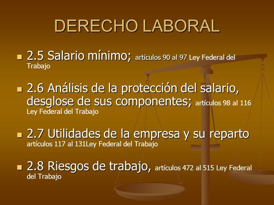 DERECHO LABORAL 2.5 Salario mínimo; artículos 90 al 97 2.5 Salario mínimo; artículos 90 al 97 Ley Federal del Trabajo 2.6 Análisis de la protección de