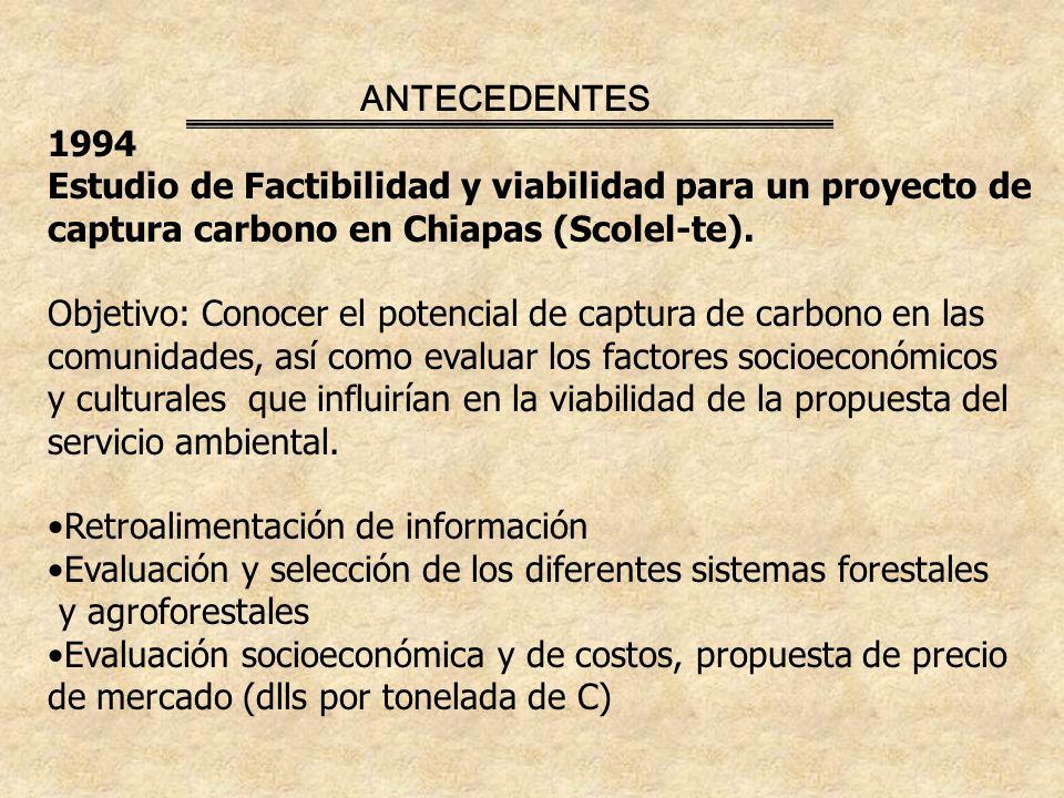 ANTECEDENTES 1994 Estudio de Factibilidad y viabilidad para un proyecto de captura carbono en Chiapas (Scolel-te).