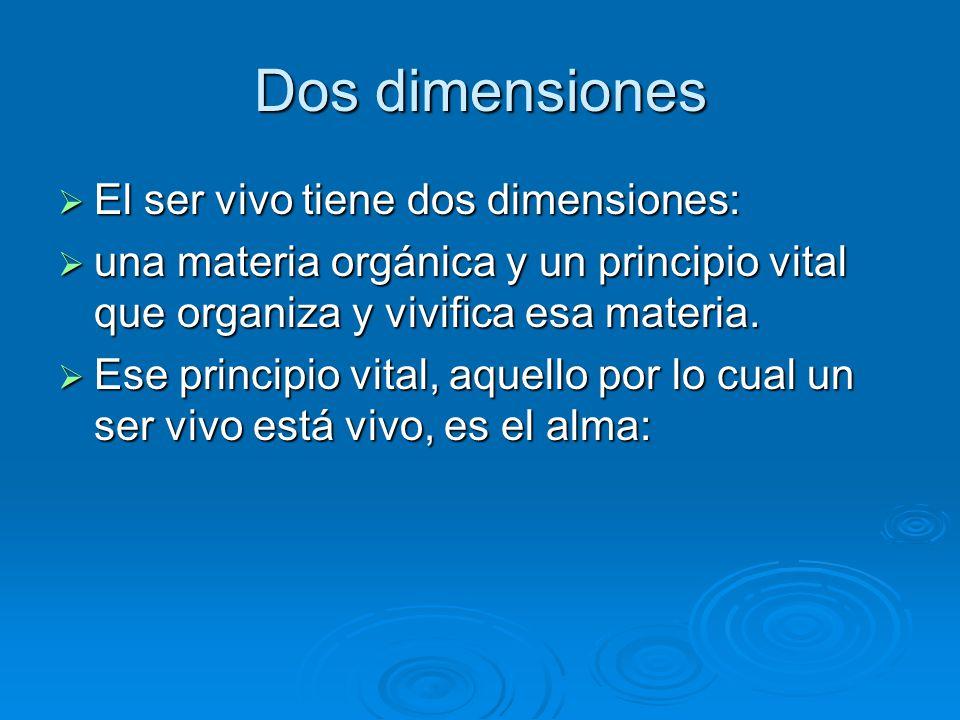 Dos dimensiones El ser vivo tiene dos dimensiones: El ser vivo tiene dos dimensiones: una materia orgánica y un principio vital que organiza y vivific