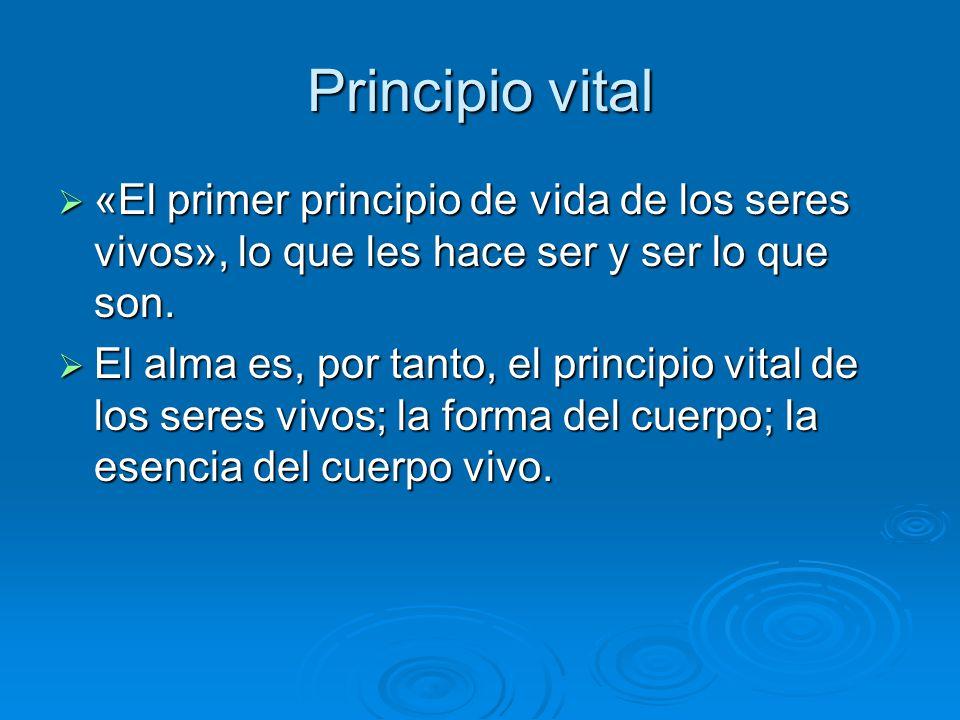Principio vital «El primer principio de vida de los seres vivos», lo que les hace ser y ser lo que son. «El primer principio de vida de los seres vivo