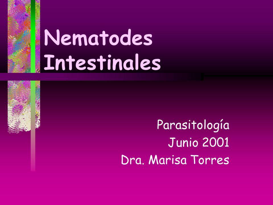 Nematodes Intestinales Parasitología Junio 2001 Dra. Marisa Torres