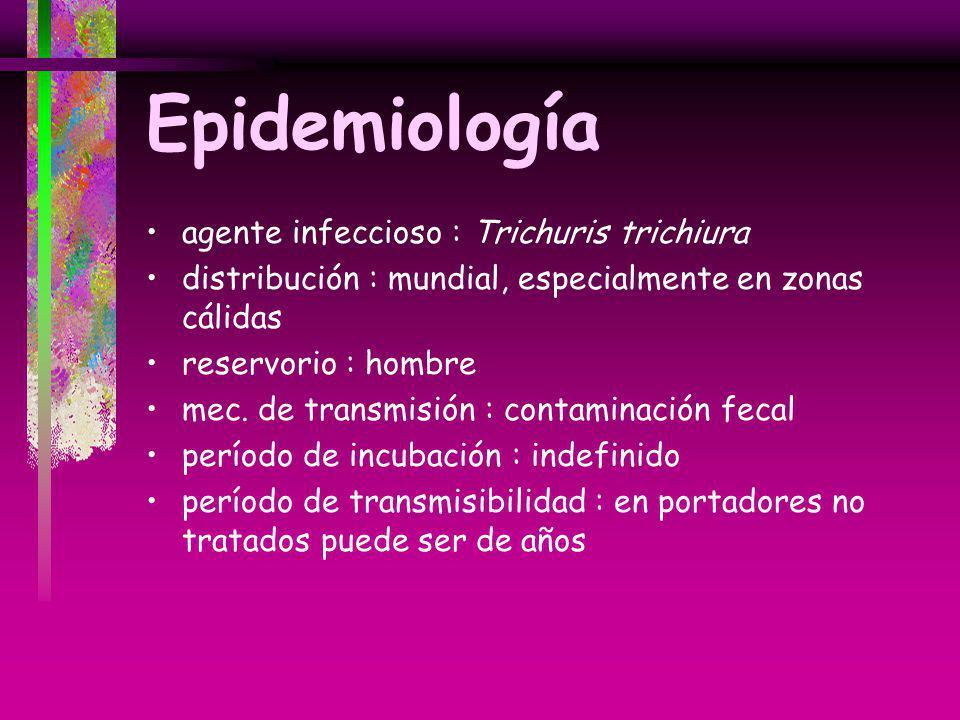 Epidemiología agente infeccioso : Trichuris trichiura distribución : mundial, especialmente en zonas cálidas reservorio : hombre mec. de transmisión :