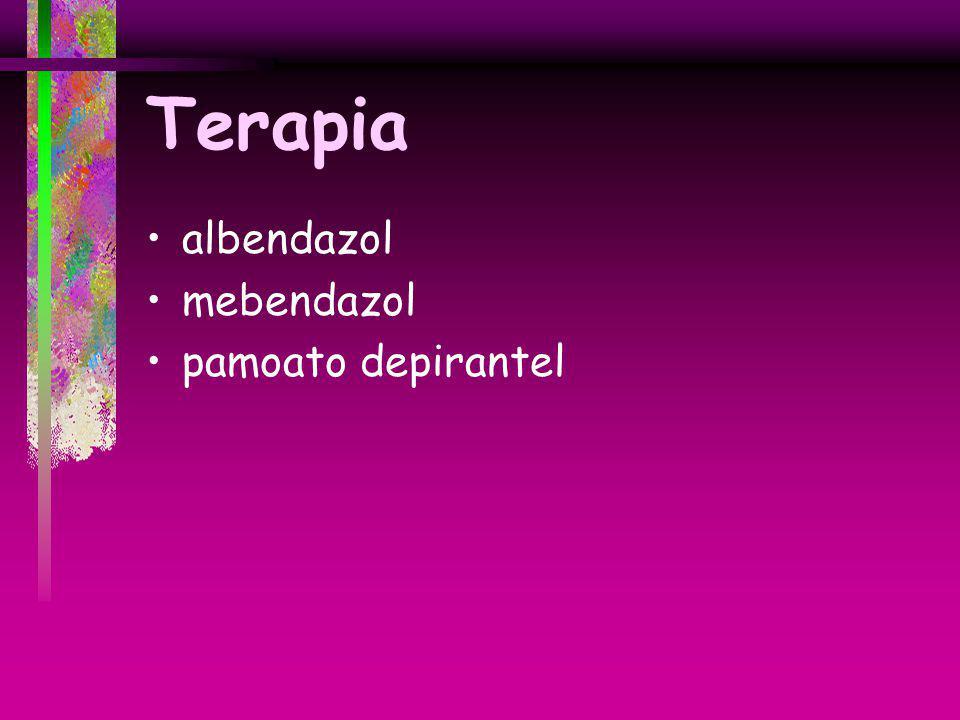 Terapia albendazol mebendazol pamoato depirantel