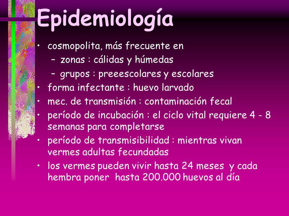 Epidemiología cosmopolita, más frecuente en –zonas : cálidas y húmedas –grupos : preeescolares y escolares forma infectante : huevo larvado mec. de tr