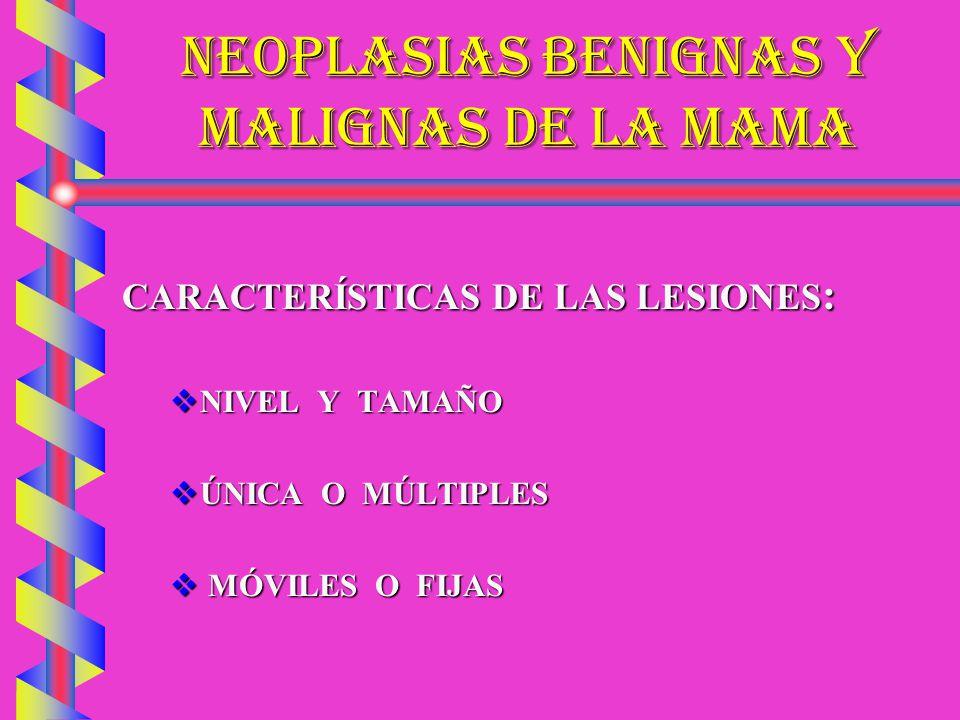NEOPLASIAS BENIGNAS Y MALIGNAS DE LA MAMA CARACTERÍSTICAS DE LAS LESIONES : NIVEL Y TAMAÑO NIVEL Y TAMAÑO ÚNICA O MÚLTIPLES ÚNICA O MÚLTIPLES MÓVILES