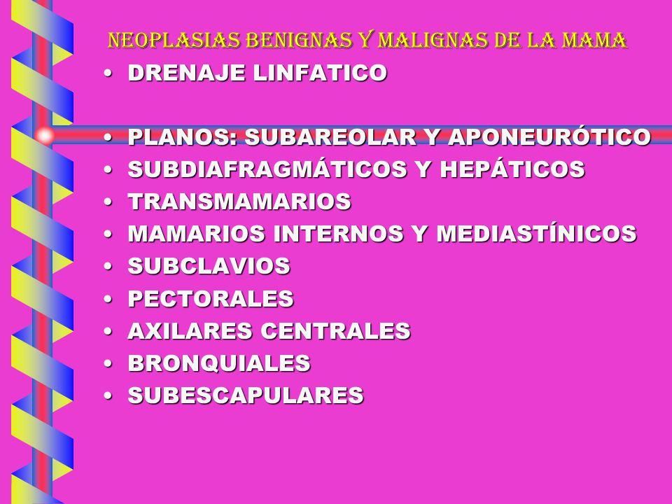 NEOPLASIAS BENIGNAS Y MALIGNAS DE LA MAMA DRENAJE LINFATICODRENAJE LINFATICO PLANOS: SUBAREOLAR Y APONEURÓTICOPLANOS: SUBAREOLAR Y APONEURÓTICO SUBDIA