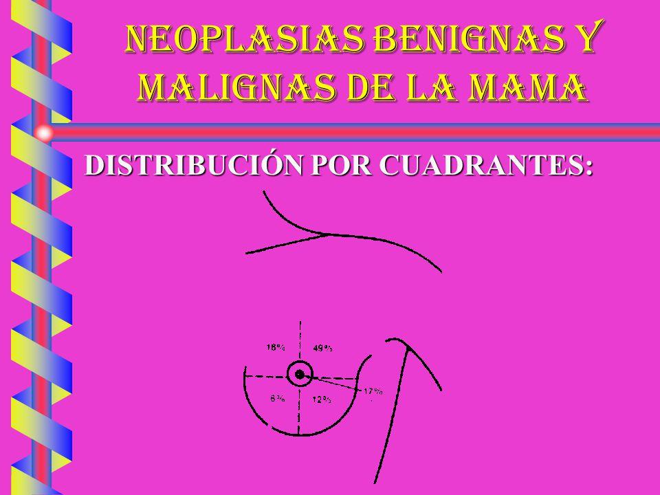 NEOPLASIAS BENIGNAS Y MALIGNAS DE LA MAMA SARCOMASARCOMA MUJERES PERIMENOPÁUSICASMUJERES PERIMENOPÁUSICAS CRECIMIENTO RÁPIDO, DUROCRECIMIENTO RÁPIDO, DURO MALIGNIZACIÓN DE UN FIBROMAMALIGNIZACIÓN DE UN FIBROMA RÁPIDAMENTE OSTEOGÉNICORÁPIDAMENTE OSTEOGÉNICO LINFO, MIO, LIPO, MIELO-SARCOMASLINFO, MIO, LIPO, MIELO-SARCOMAS FRECUENTEMENTE AFECTA A PIELFRECUENTEMENTE AFECTA A PIEL AUSENCIA DE GANGLIOSAUSENCIA DE GANGLIOS DX: MASTOGRAFÍADX: MASTOGRAFÍA TX: MASTECTOMÍA RADICAL Y E.T.O Q.