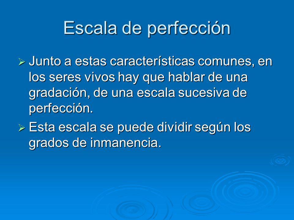 Escala de perfección Junto a estas características comunes, en los seres vivos hay que hablar de una gradación, de una escala sucesiva de perfección.