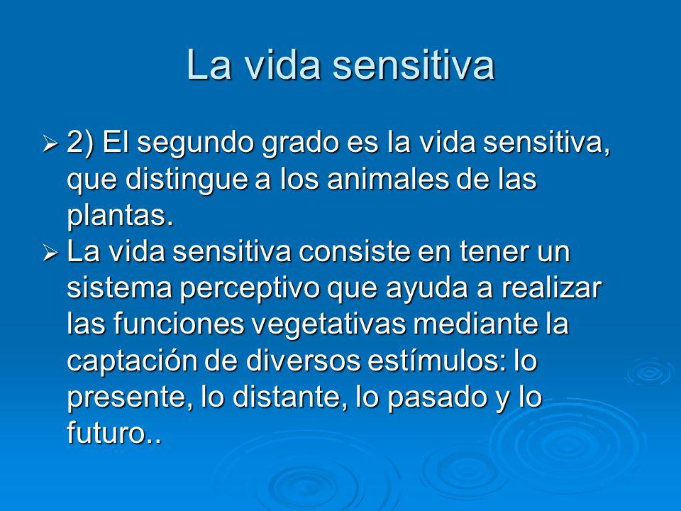 La vida sensitiva 2) El segundo grado es la vida sensitiva, que distingue a los animales de las plantas. 2) El segundo grado es la vida sensitiva, que