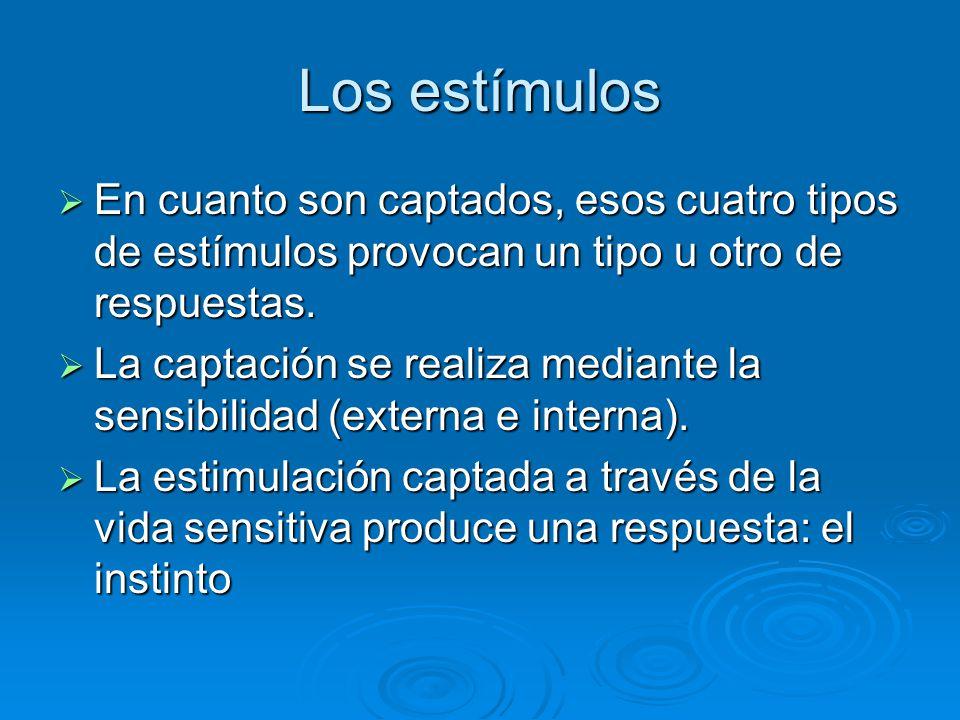 Los estímulos En cuanto son captados, esos cuatro tipos de estímulos provocan un tipo u otro de respuestas. En cuanto son captados, esos cuatro tipos