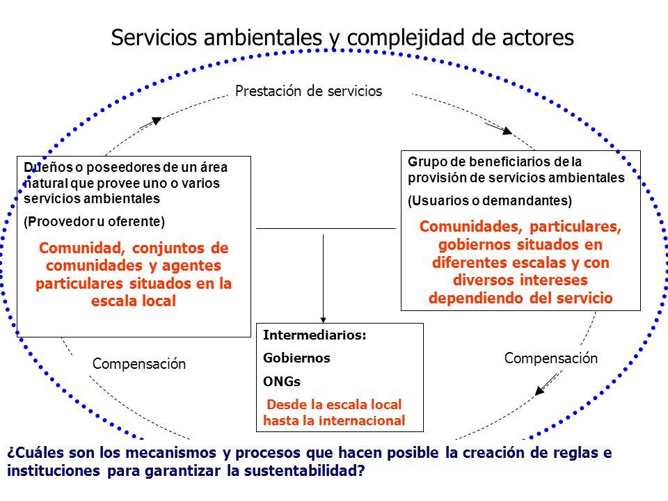 Servicios ambientales y complejidad de actores Intermediarios: Gobiernos ONGs Desde la escala local hasta la internacional Prestación de servicios Com