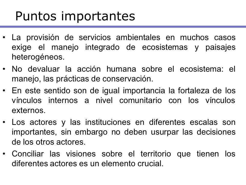 Puntos importantes La provisión de servicios ambientales en muchos casos exige el manejo integrado de ecosistemas y paisajes heterogéneos. No devaluar