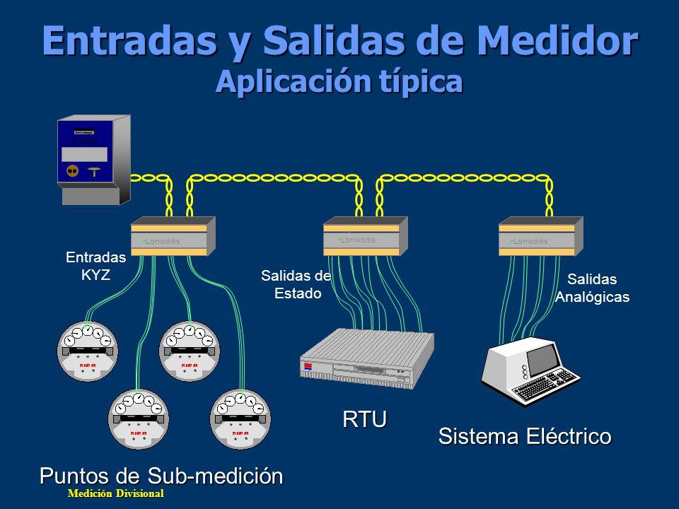 Medición Divisional Entradas y Salidas de Medidor Aplicación típica Puntos de Sub-medición Salidas Analógicas Entradas KYZ Q1000 Schlumberger Salidas