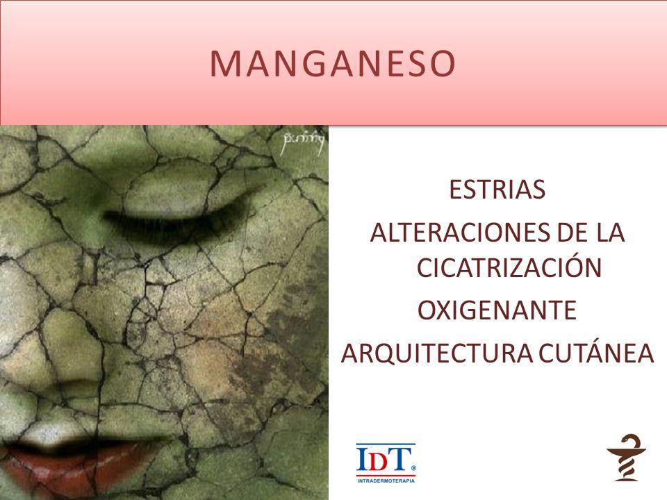 MANGANESO ESTRIAS ALTERACIONES DE LA CICATRIZACIÓN OXIGENANTE ARQUITECTURA CUTÁNEA