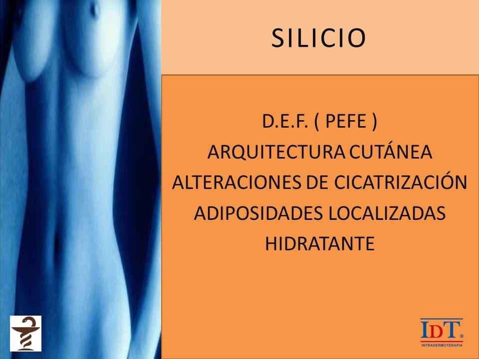 SILICIO D.E.F. ( PEFE ) ARQUITECTURA CUTÁNEA ALTERACIONES DE CICATRIZACIÓN ADIPOSIDADES LOCALIZADAS HIDRATANTE