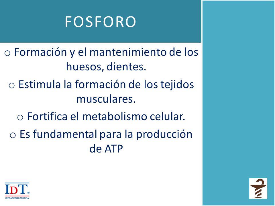 FOSFORO o Formación y el mantenimiento de los huesos, dientes. o Estimula la formación de los tejidos musculares. o Fortifica el metabolismo celular.