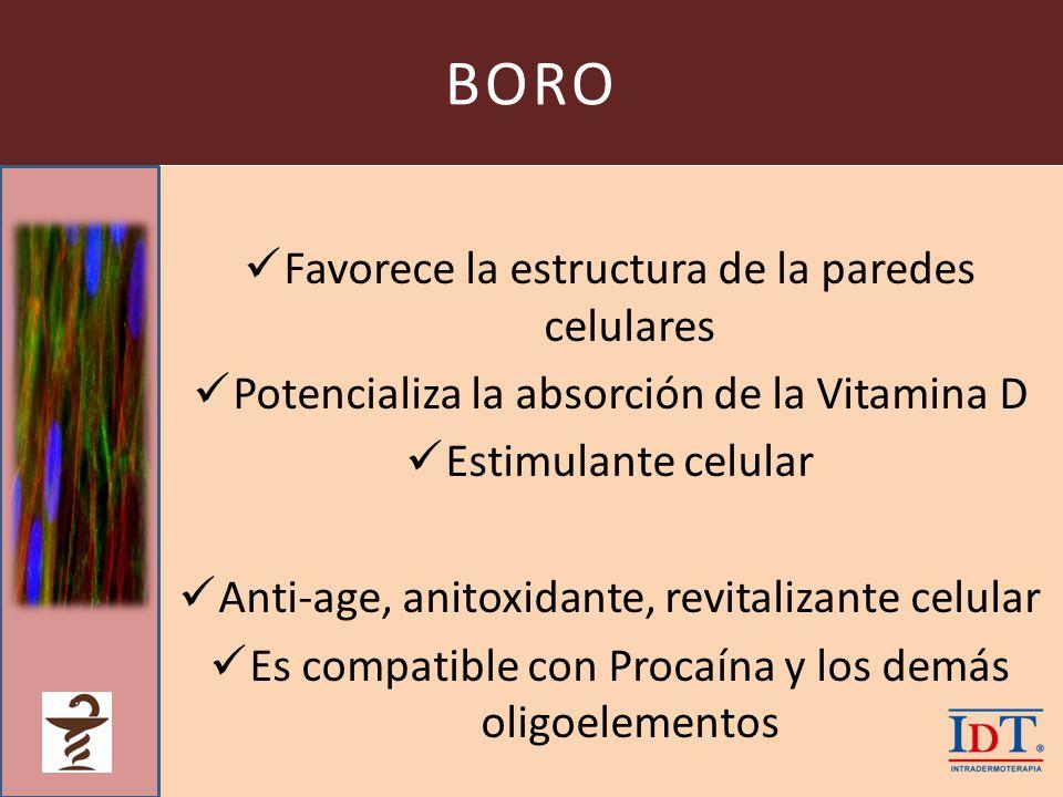 BORO Favorece la estructura de la paredes celulares Potencializa la absorción de la Vitamina D Estimulante celular Anti-age, anitoxidante, revitalizan