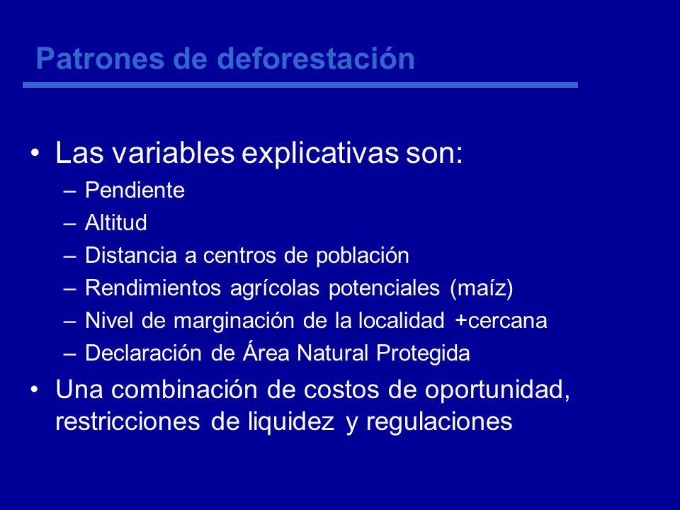 Patrones de deforestación Las variables explicativas son: –Pendiente –Altitud –Distancia a centros de población –Rendimientos agrícolas potenciales (maíz) –Nivel de marginación de la localidad +cercana –Declaración de Área Natural Protegida Una combinación de costos de oportunidad, restricciones de liquidez y regulaciones