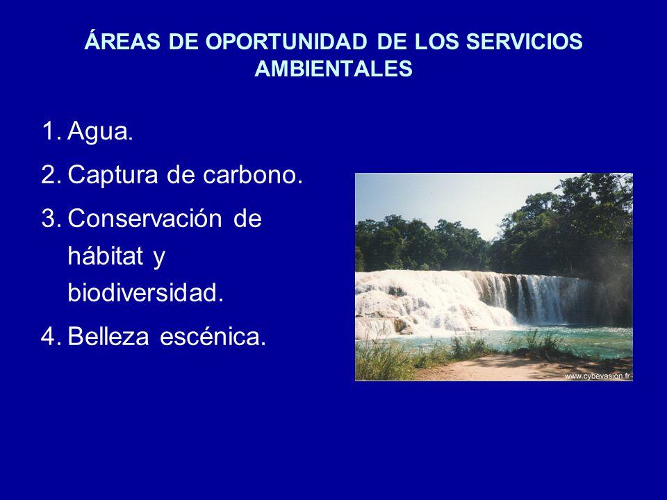 ÁREAS DE OPORTUNIDAD DE LOS SERVICIOS AMBIENTALES 1.Agua.