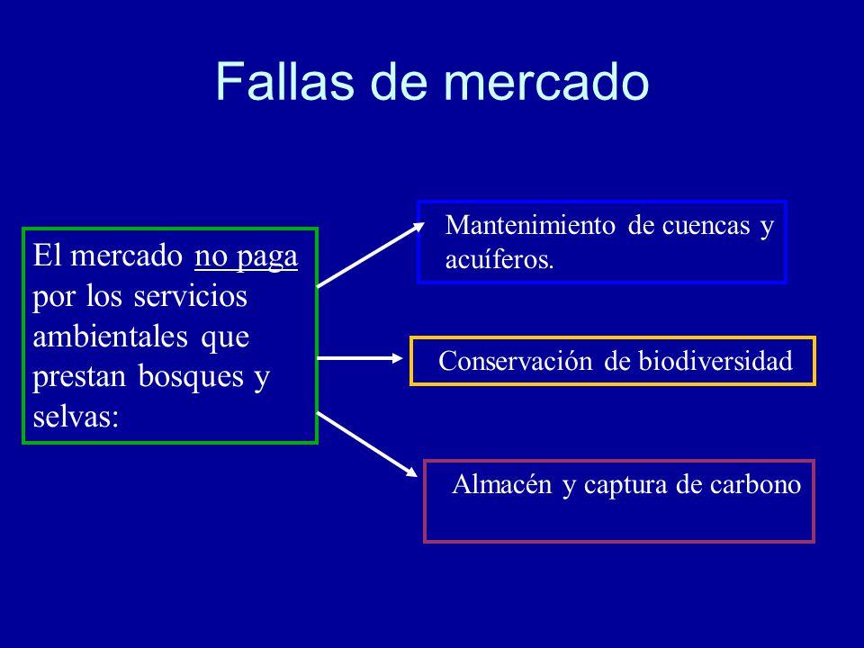 Fallas de mercado Mantenimiento de cuencas y acuíferos.