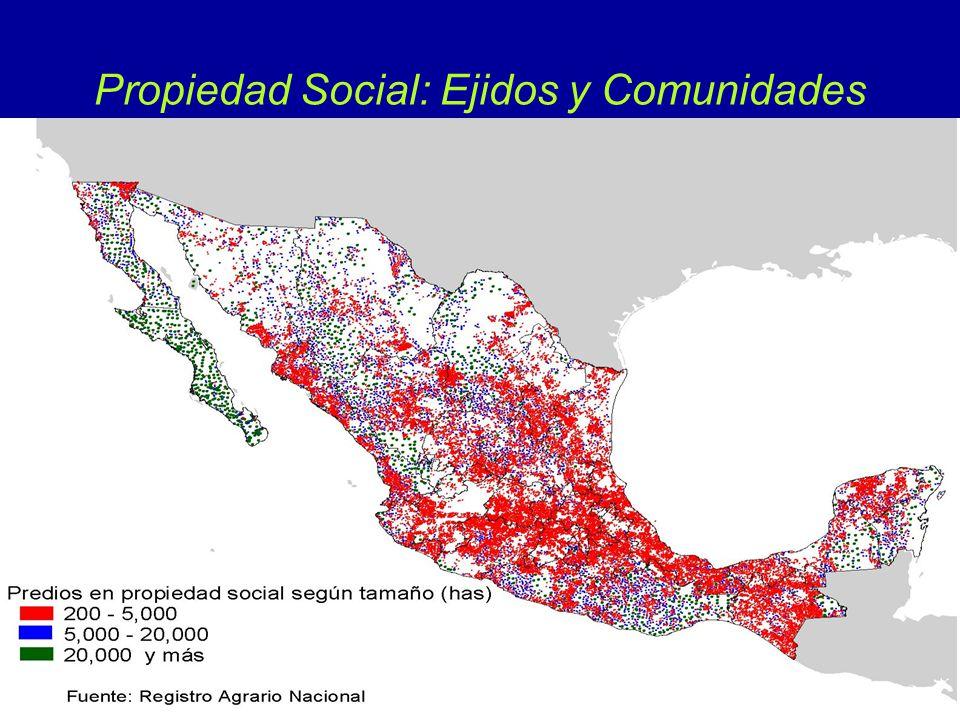Propiedad Social: Ejidos y Comunidades