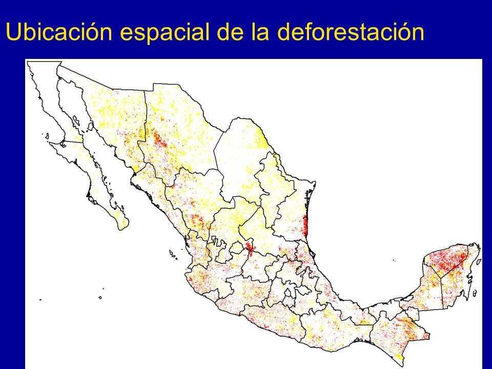 Ubicación espacial de la deforestación