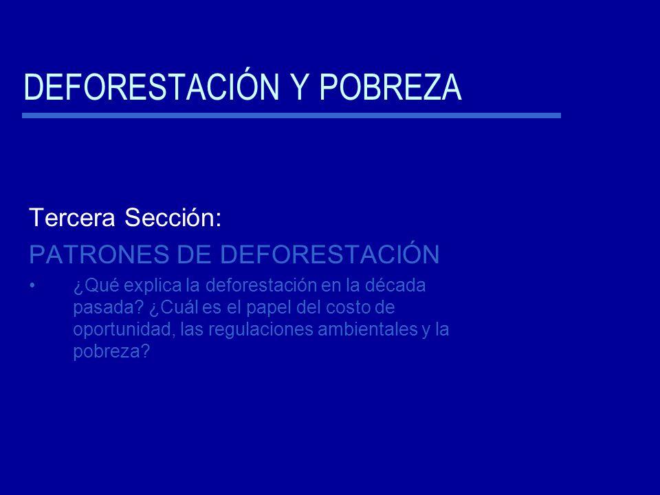 DEFORESTACIÓN Y POBREZA Tercera Sección: PATRONES DE DEFORESTACIÓN ¿Qué explica la deforestación en la década pasada.