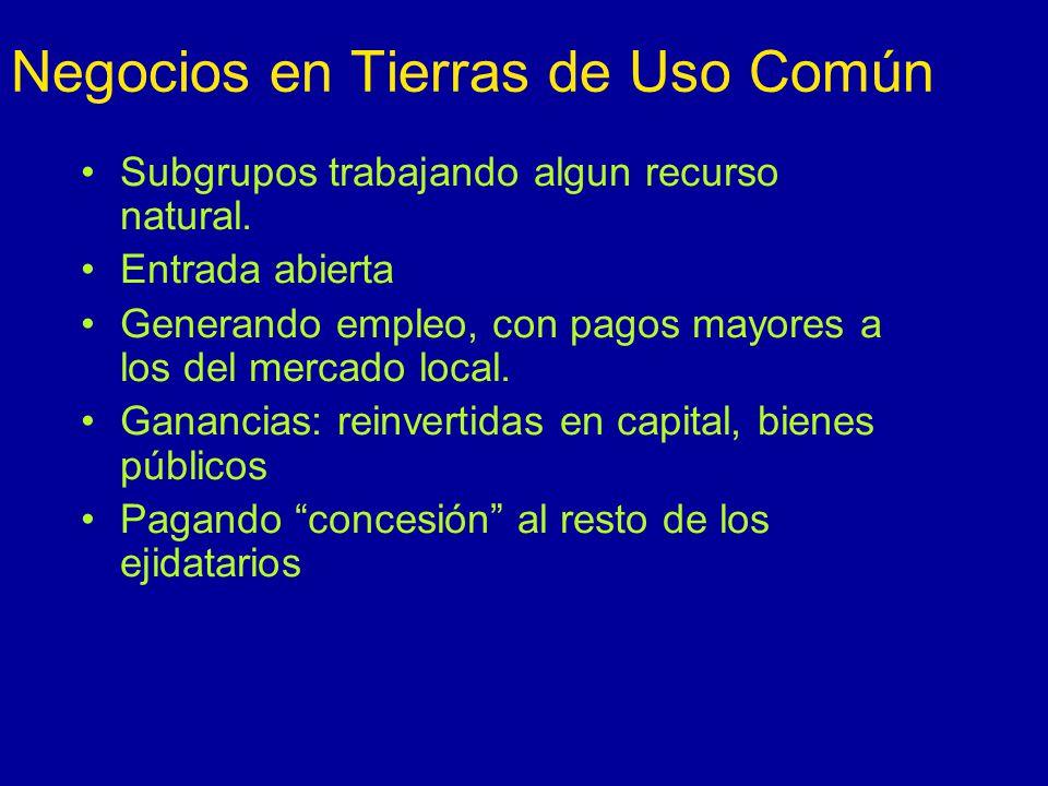 Negocios en Tierras de Uso Común Subgrupos trabajando algun recurso natural.