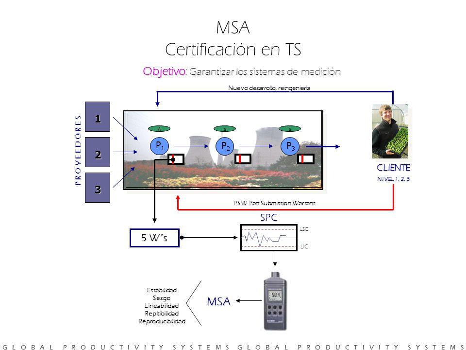 G L O B A L P R O D U C T I V I T Y S Y S T E M S G L O B A L P R O D U C T I V I T Y S Y S T E M S Objetivo: Garantizar los sistemas de medición MSA Certificación en TS P R O V E E D O R E S 1 2 3 P1P1 A P2P2 A P3P3 A Nuevo desarrollo, reingeniería PSW Part Submission Warrant 5 W´s SPC LSC LIC EstabilidadSesgoLineabilidadRepitibilidadReproducibilidad MSA CLIENTE NIVEL 1, 2, 3