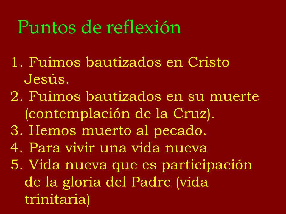 Puntos de reflexión 1. Fuimos bautizados en Cristo Jesús. 2. Fuimos bautizados en su muerte (contemplación de la Cruz). 3. Hemos muerto al pecado. 4.