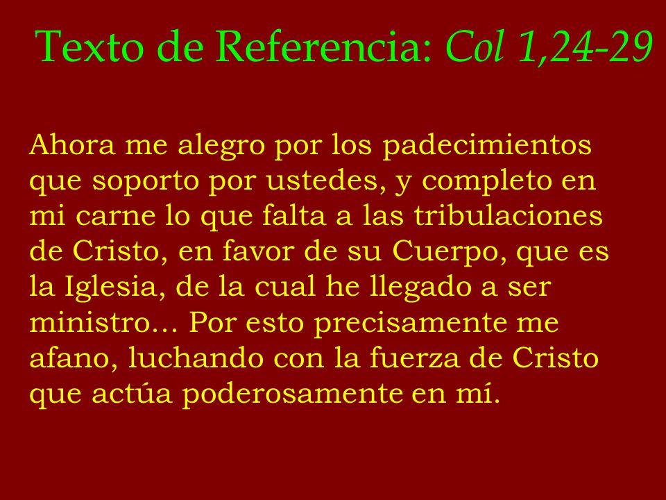 Texto de Referencia: Col 1,24-29 Ahora me alegro por los padecimientos que soporto por ustedes, y completo en mi carne lo que falta a las tribulacione