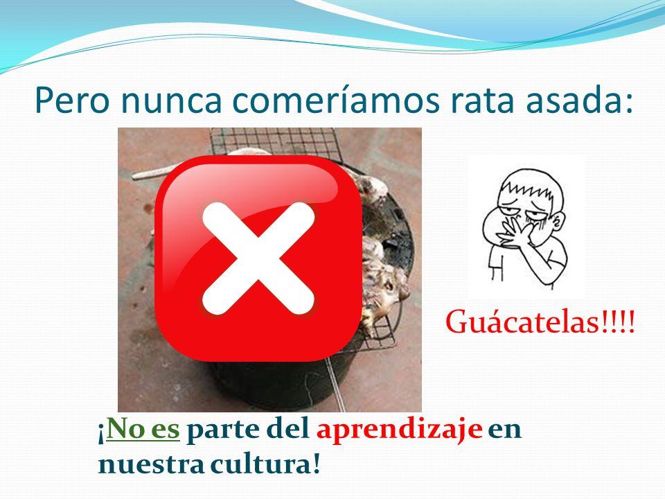 Pero nunca comeríamos rata asada: Guácatelas!!!! ¡No es parte del aprendizaje en nuestra cultura!