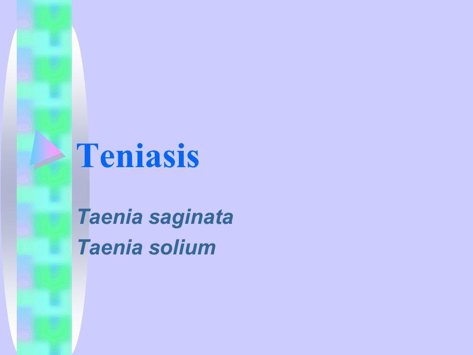 Teniasis Taenia saginata Taenia solium